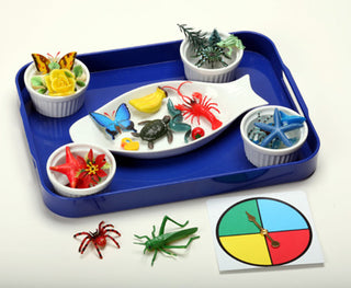 Colors in Nature Object Sorting Kit