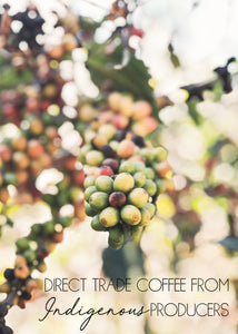 Direct Trade Coffee from Indigenous producers.