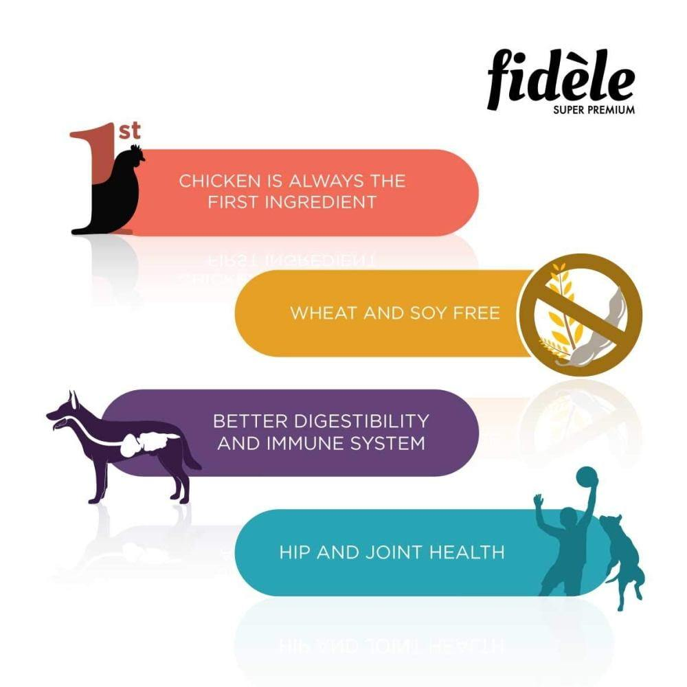 Fidele Adult Pate Chicken Wet Dog Food, 400 gm