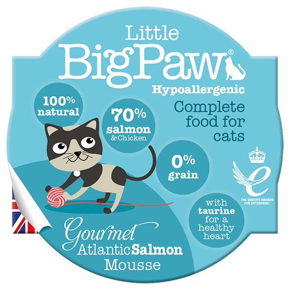 Little Big Paw Gourmet Atlantic Salmon Mousse Wet Canned Food For Adult Cats