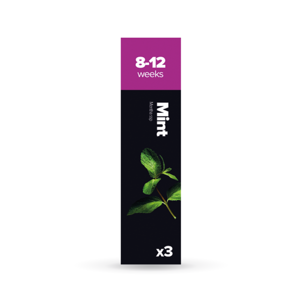 Mint Seeds (x3 Capsules)