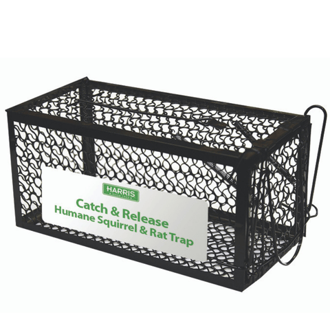 Harris Catch & Release Humane Trap for small squirrels, rat & chipmunks