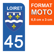 Load the image in the gallery, Stickers for AUTO and MOTO license plate - 45 LOIRET