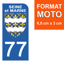 Load the image in the gallery, Stickers for AUTO and MOTO license plate - 77 SEINE et MARNE
