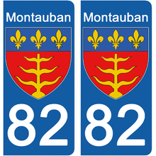 Load the image in the gallery, stickers for AUTO and MOTO license plates - 82 TARN et GARONNE, MONTAUBAN