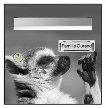 Upload the image to the gallery, The suricate