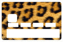 Upload image to gallery, Leopard
