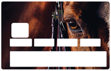 Upload image to gallery, Horse