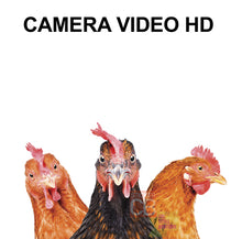 Upload image to gallery, HD video camera
