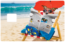 Upload image to gallery, The dog reading at the beach