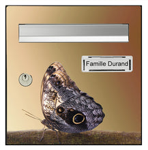 Upload image to gallery, Butterfly