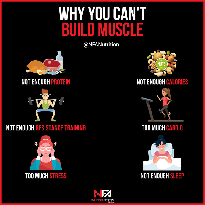 6 Reasons You Aren't Building Muscle