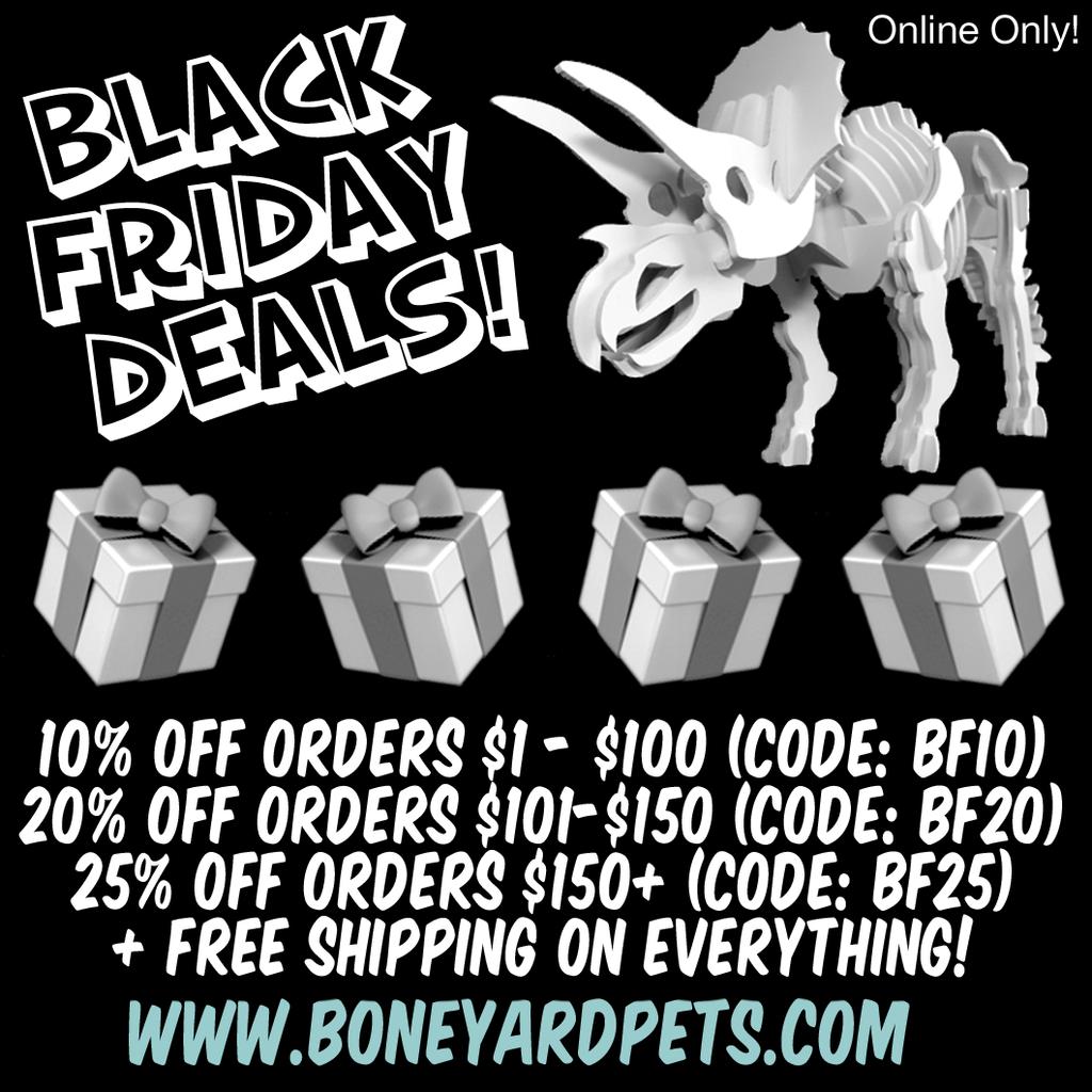 Black Friday / Cyber Monday Weekend Deals!