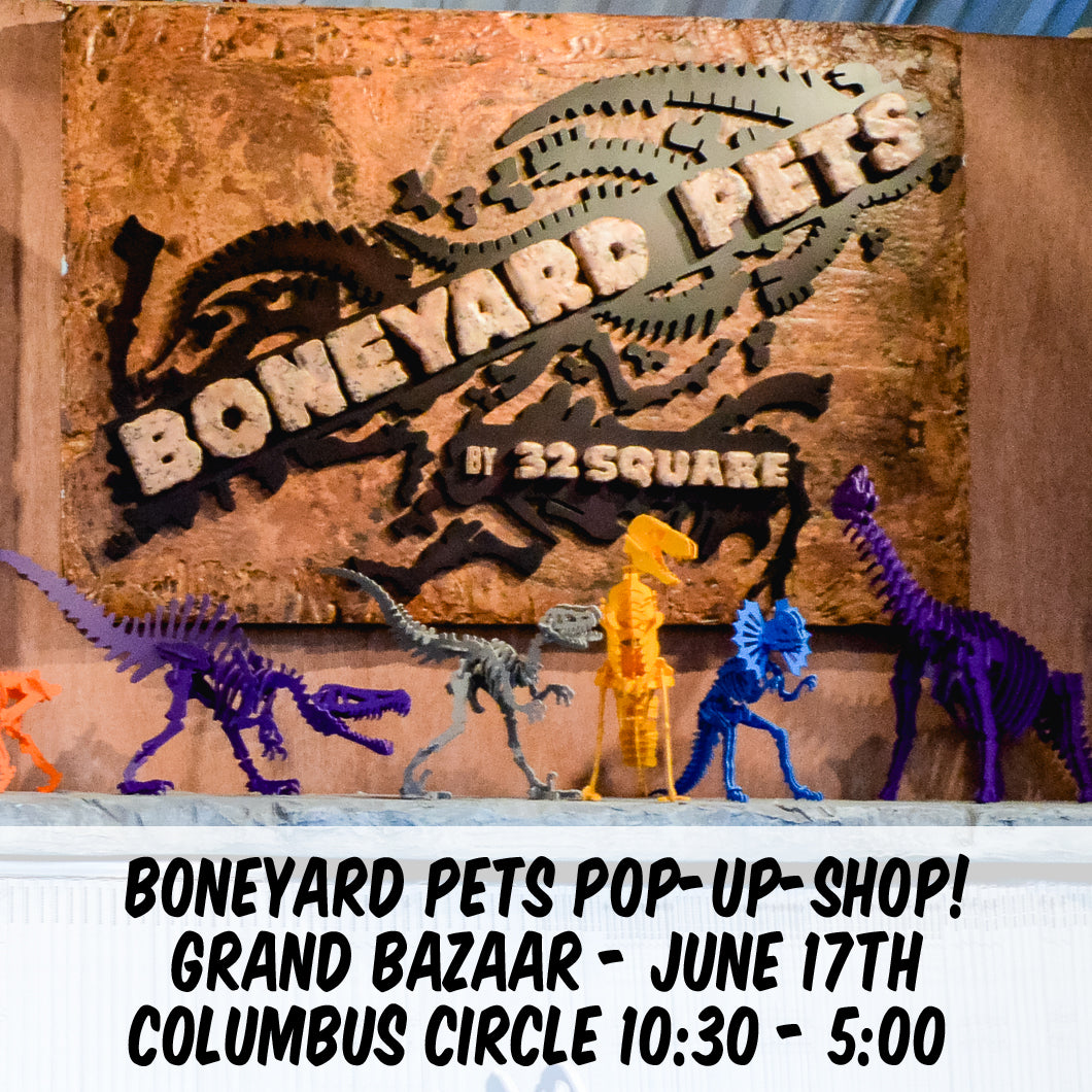 Boneyard Pets LIVE This Sunday in NYC! June 17th!