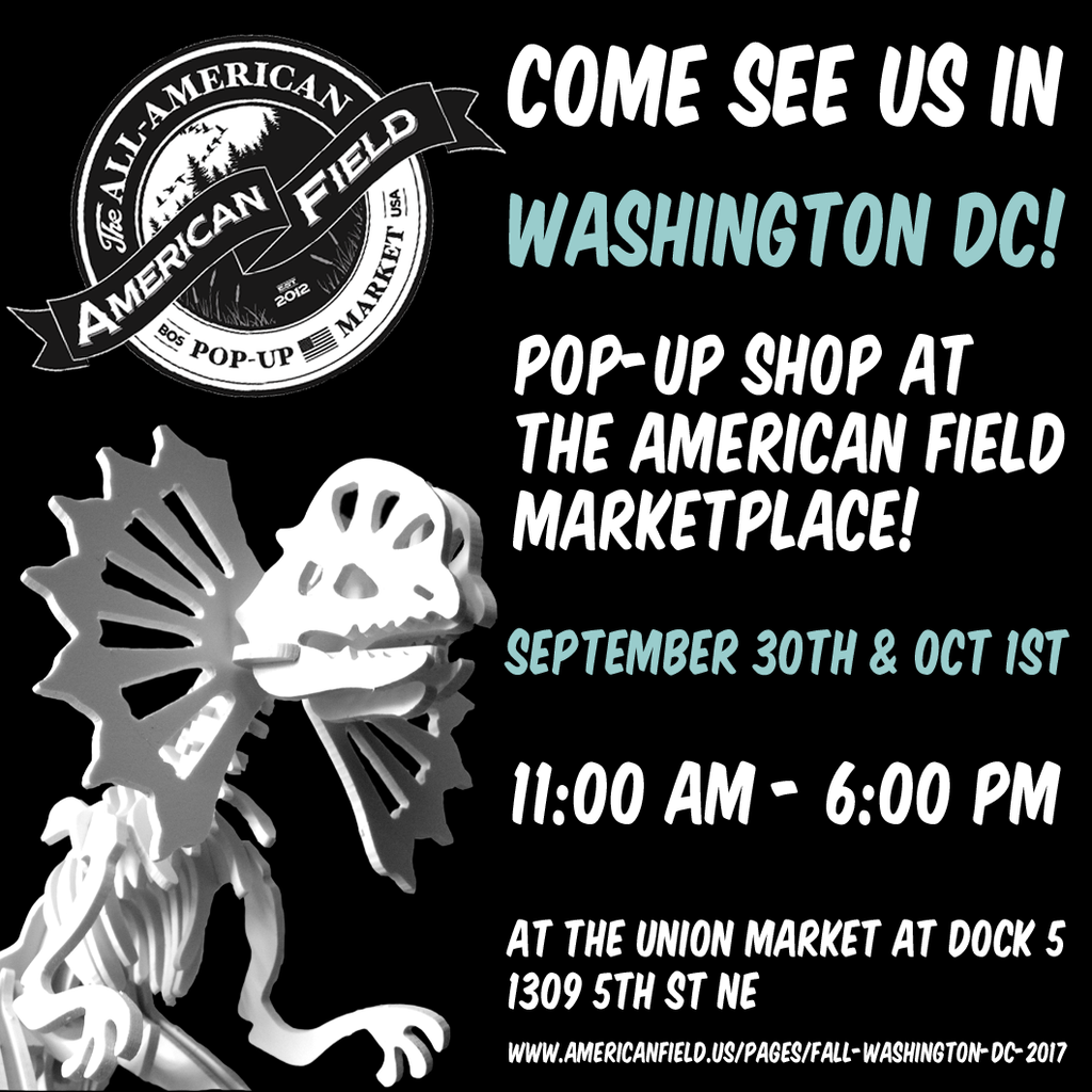 We are going to be in Washington DC this weekend!