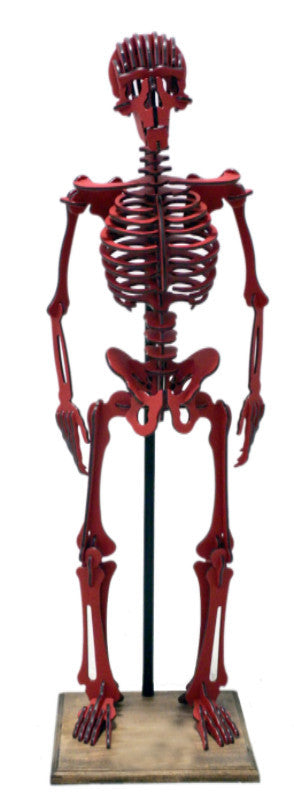 Oversized 3D Skeleton Puzzle - Homo Sapiens - Recycled HDPE - 8 Two-Tone Color Combinations