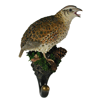 bobwhite quail hook natures window