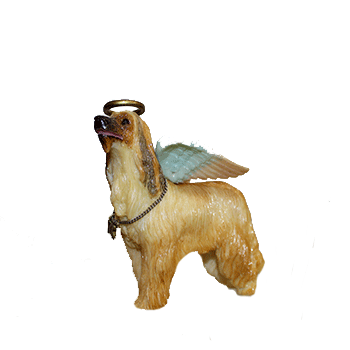 Afghan Hound Angel Dog