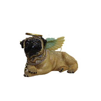 Pug Angel Dog