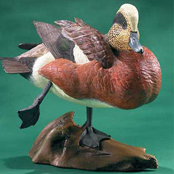 American Wigeon Limited Edition Decoy