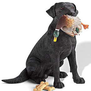 Black Lab with Mallard Sculpture
