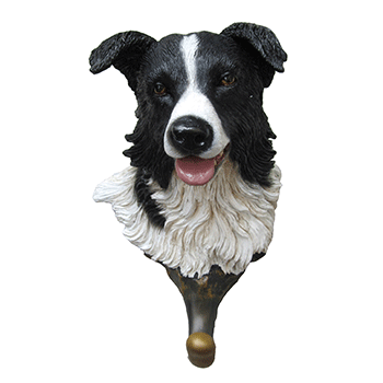 border collie hook