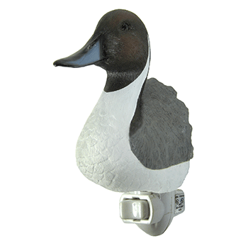 pintail night light