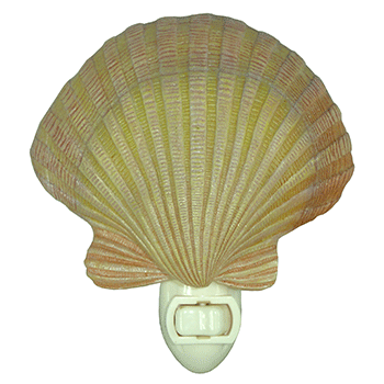 shell night light