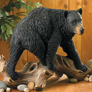 black bear on driftwood