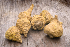 photo of a maca root on wood-sexual aphrodisiac-www.rdalchemy.com