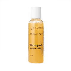 Travel Hair Shampoo