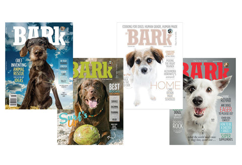 The Bark 2016 4-Pack