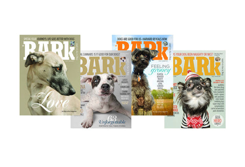 The Bark 2015 4-Pack