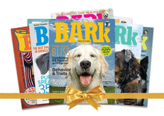 The Bark–Complete Collection