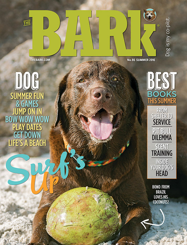 Issue 86: Summer 2016