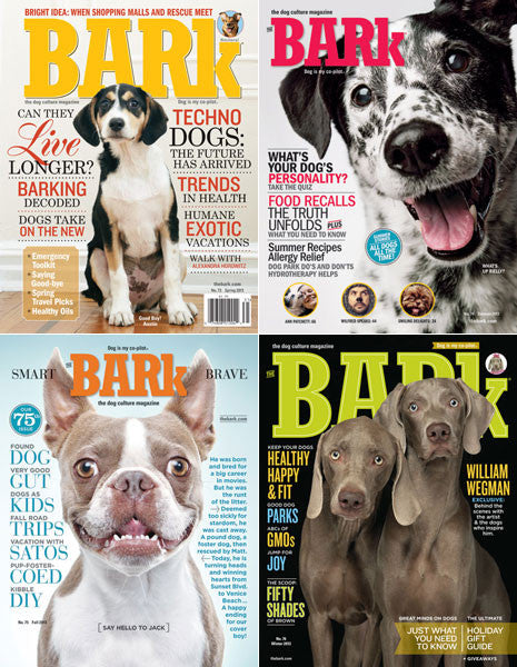 The Bark 2013 4-Pack