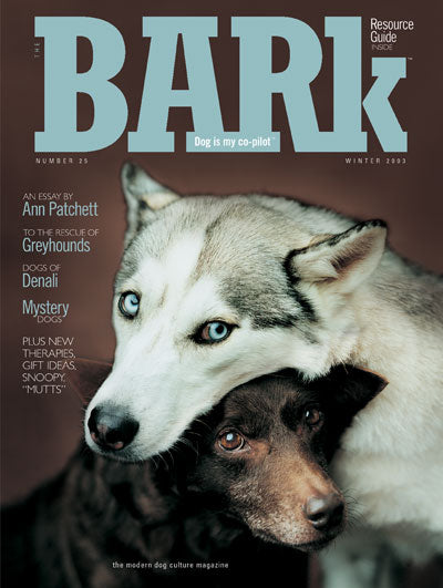 Issue 25: Winter 2003