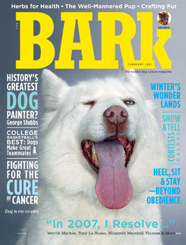 The Bark Issue 40