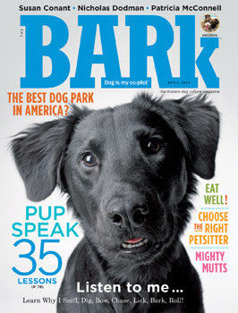 The Bark Issue 41