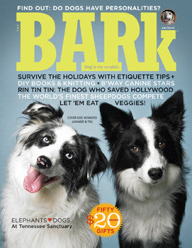 The Bark Issue 51