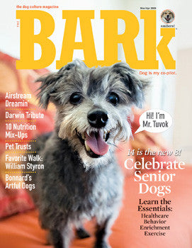 The Bark Issue 53