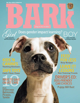 The Bark Issue 54