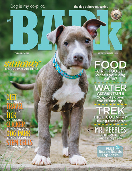 The Bark Issue 78