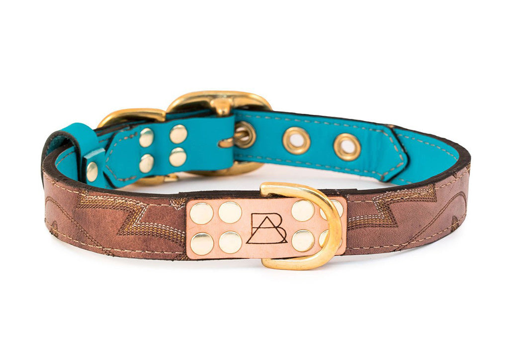 Leather & Turquoise Dog Collar