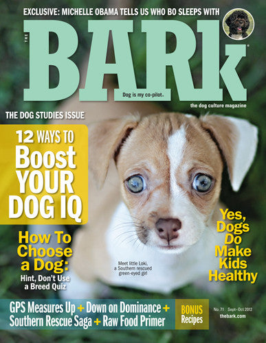 The Bark Issue 71