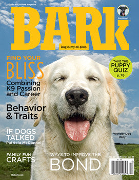 The Bark Issue 62