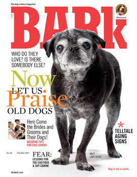 The Bark Issue 63
