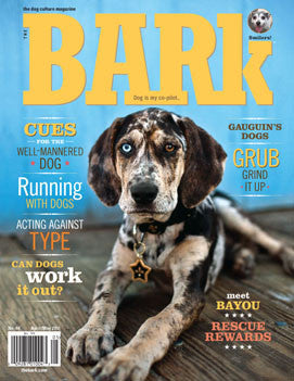 The Bark Issue 64