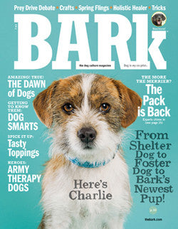The Bark Issue 69