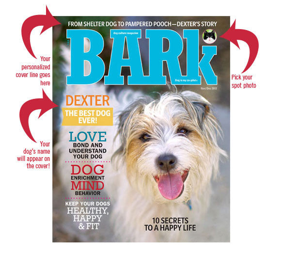 Design Your Own Book Cover Printable ~ Create your own framed bark cover print barkgoods